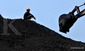 Pekerja menyiram batubara asal Sumatera yang akan diolah sebelum dikirim ke industri di penimbunan sementara Cilincing, Jakarta Utara (7/2). Produksi batubara Indonesia tahun 2011 lalu naik 34,4% menjadi 371 juta ton dari realisasi tahun 2010 sebesar 276 juta ton. Menurut Direktur Pembinaan Pengusahaan Batubara Ditjen Minerba mengungkapkan, ekspor mendominasi 78%, sisanya 22% diserap di dalam negeri. KONTAN/Muradi/07/02/2012
