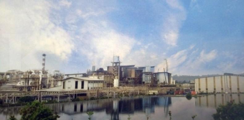 Menilik target 57 smelter mineral di tahun 2022, realistis kah?