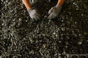 FILE PHOTO: A worker displays nickel ore in a ferronickel smelter owned by state miner Aneka Tambang Tbk at Pomala district, Indonesia, March 30, 2011. REUTERS/Yusuf Ahmad/File Photo